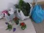 Am plantat flori